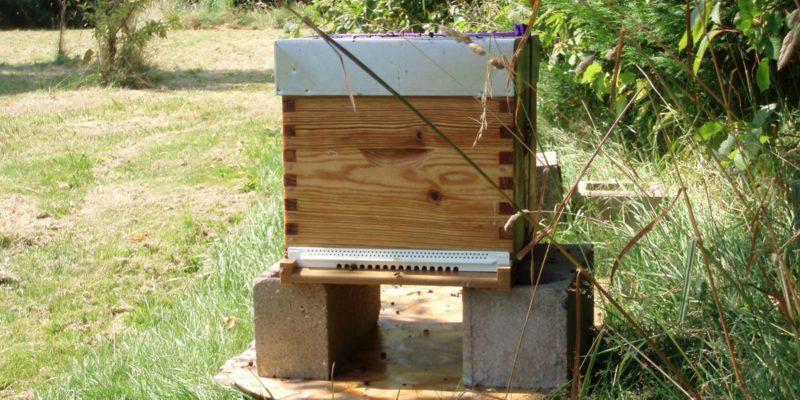 installer une ruche dans son jardin 5 choses savoir. Black Bedroom Furniture Sets. Home Design Ideas